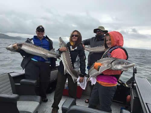 Sturgeon Oregon Fishing Guide